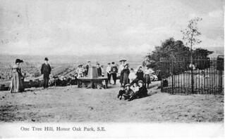 One Tree Hill, Honor Oak | by Steve Grindlay