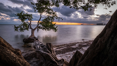 sand calm peaceful nature water orange sea trees beach ocean tree photography fuji sky miami wallart geotagged fineart tranquil prints fujix sunset print sun unitedstates fujifilm florida canvas longexposure photo photograph horizontal beautiful travel landscape skyline yellow xpro2 seascape usa depth clouds fujixpro2 onsale