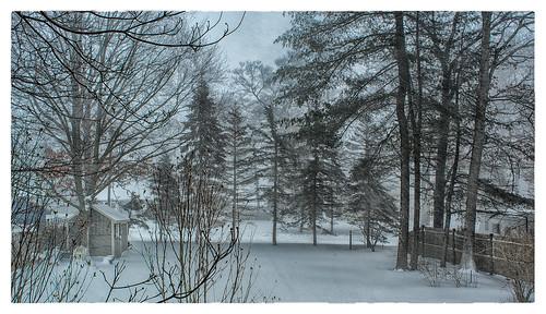 Snow Day | by Timothy Valentine