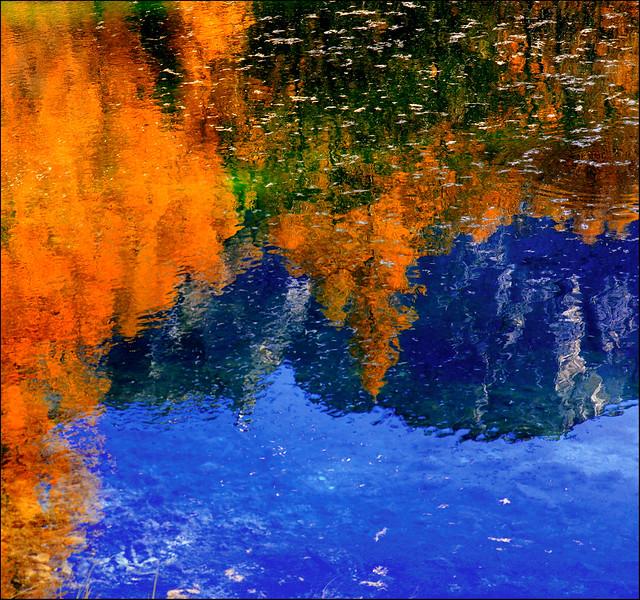 Riflessioni cortinesi / Cortina's reflections