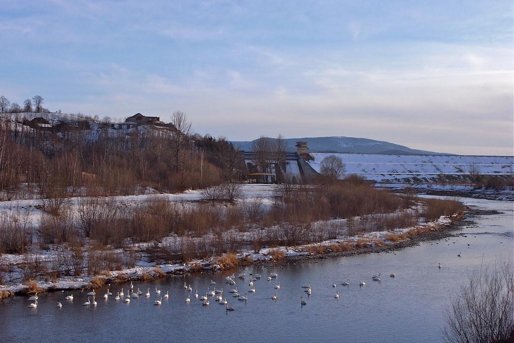 Widok z mostu / View from the bridge