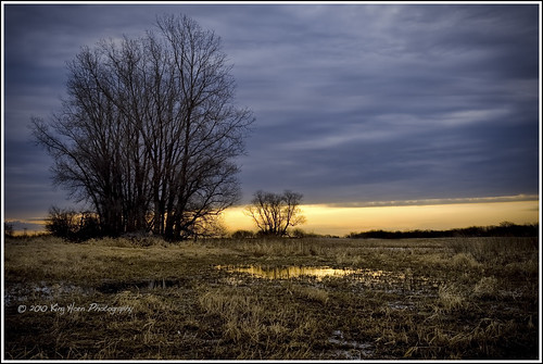 morning trees sky minnesota clouds sunrise cornfield farm d700