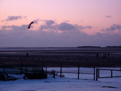 Kite flying, West Kirby Beach (09/01/2010)