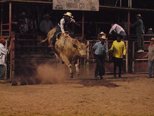 Dayton Texas Bar N Bar Arena Richard Family Rodeo Night Ti
