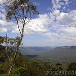 Viajefilos en Australia. Blue Mountains 035