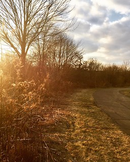 Oh Sun, How We've Missed You #shirleyruns #trailrunning #goldenhour #shimmer #secondwindrunning | by shirley319