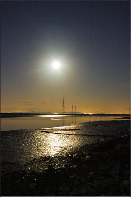 Moon Over the Marshes