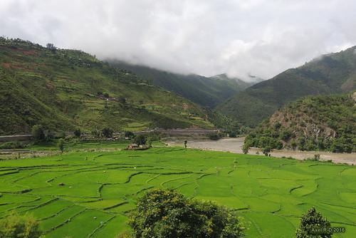 champs montagnes nepal nuages préci