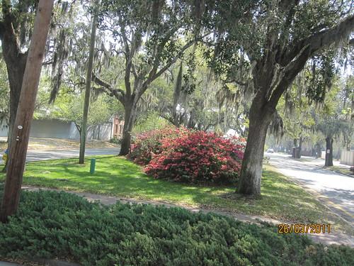 Savannah, tur in centrul istoric | by gigi4791