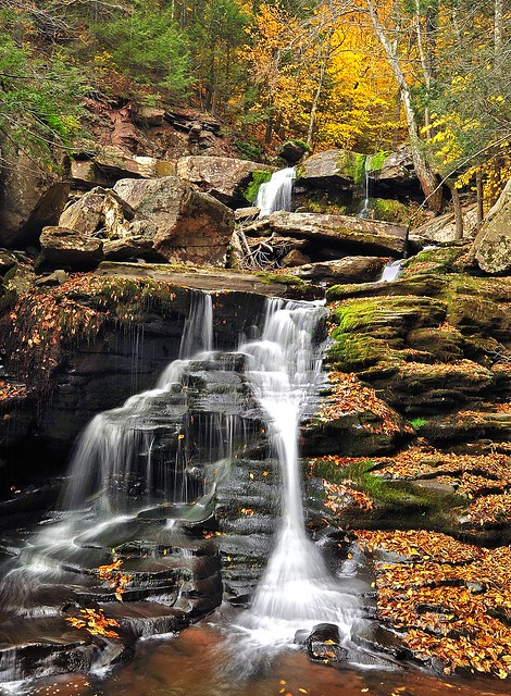 Autumnal Cascades