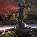 Autumn in Central Park on film #7 by CVerwaal
