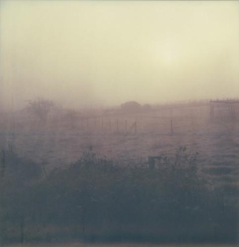 morning mist film field fog landscape polaroid sx70 superfantastique sebastopol atz expired0909