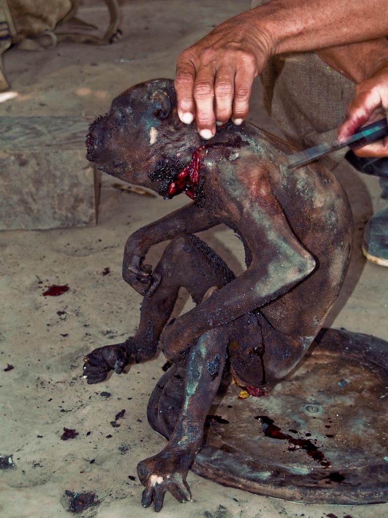 Spider Monkey (cooked) | Upper Amazon | Flickr