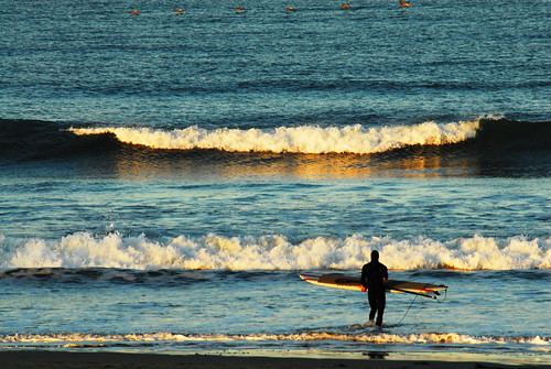 california beach pelicans sunrise sand waves surfer surfboard pismobeach surfsup