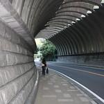 骨トンネル Frozen tunnel