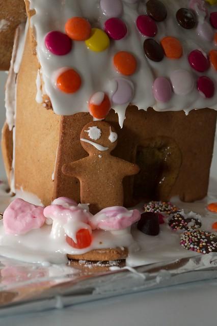 imgp0203 - Gingerbread Portrait