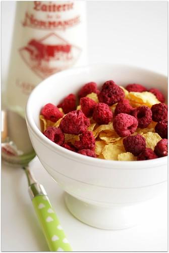 dried raspberries | by C.Mariani
