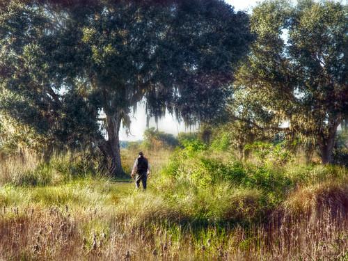 peaceandquiet thelakewoodruffnationalwildliferefuge deleonspringsflorida centralflorida grass trees park man hiker scenic landscape nature y
