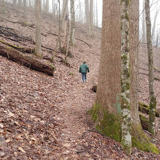 hiking suches   by Camper Mike '72