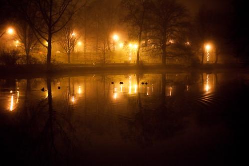 Thanksgiving Fog - Albany, NY - 09, Nov - 03   by sebastien.barre