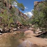 Left Fork North Creek