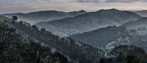 california clayton brentwood antioch marshcreek pano panorama pentax 645 645z 67 m300 300mm mf mediumformat mikeoria