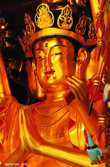 Buddhist Temple N1189e
