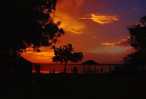 sunset rio pôrdosol mangroves thegambia áfrica gambiariver gâmbia riogâmbia gambiarivercreeks