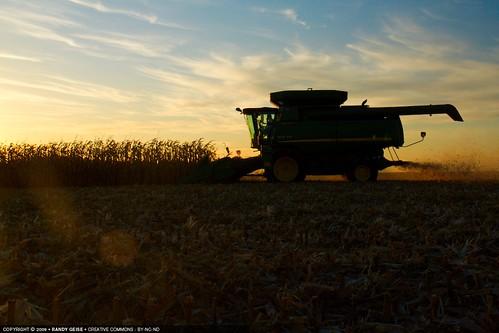 landscape corn unitedstates dusk harvest alternativeenergy combine mn johndeer slayton ethanol cornharvest