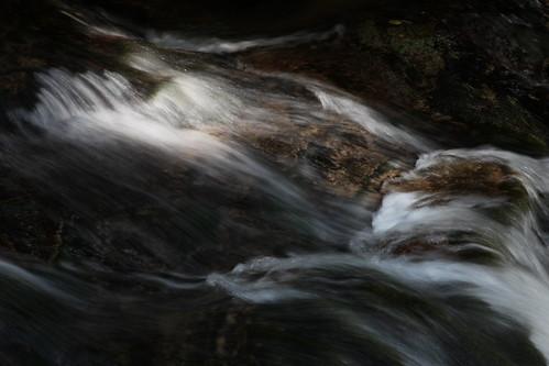 Schwarzwaldwasser
