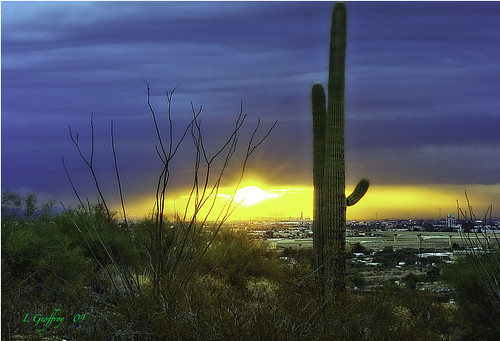 city arizona cactus cloud southwest clouds photoshop sunrise landscape dawn landscapes cityscape desert sony az saguaro sunrays hdr cs4 photomatix colorefex hdrpool dslra350 dslr350 sonydslra350 lgeof