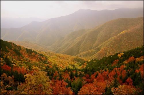 season colors