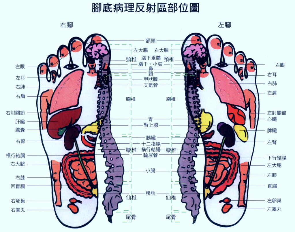 Sensational Foot Massage Diagram Centro Tao Network Flickr Wiring 101 Vihapipaaccommodationcom