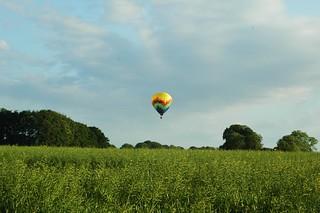 Le ballon au dessus d un champs de colza,Normandie | by isamiga76