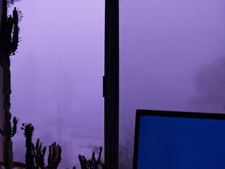 Foggy Brisbane Dawn