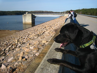 Bonzer at Falls of Neuse Dam | by rharrison