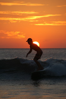 Sunset Surfer | by The Dilly Lama