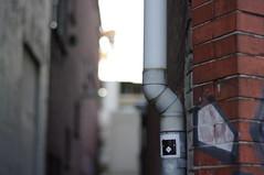 chiknfrm sticker, Haarlem