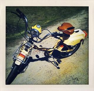 Wonder Bike
