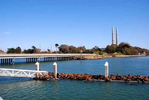 Moss Landing at Elkhorn Slough | by a7pointstar