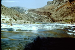 Yub1 Bass Fm. at Colorado River level 001