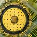 IBM Scientists Demonstrate Computer Memory Breakthrough