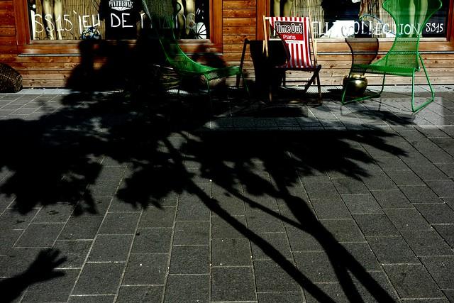 Shadow 169 - hello tree