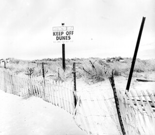 keep-off-dunes-half-solarized | by domnit