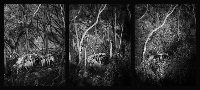 reclamation triptych - in the devil's gully