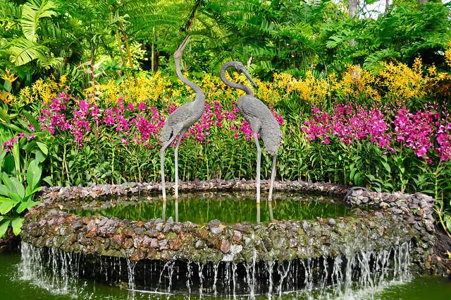 Singapore Botanic Gardens: National Orchid Farms