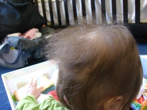 2-6-10 Good shot of her damaged hair