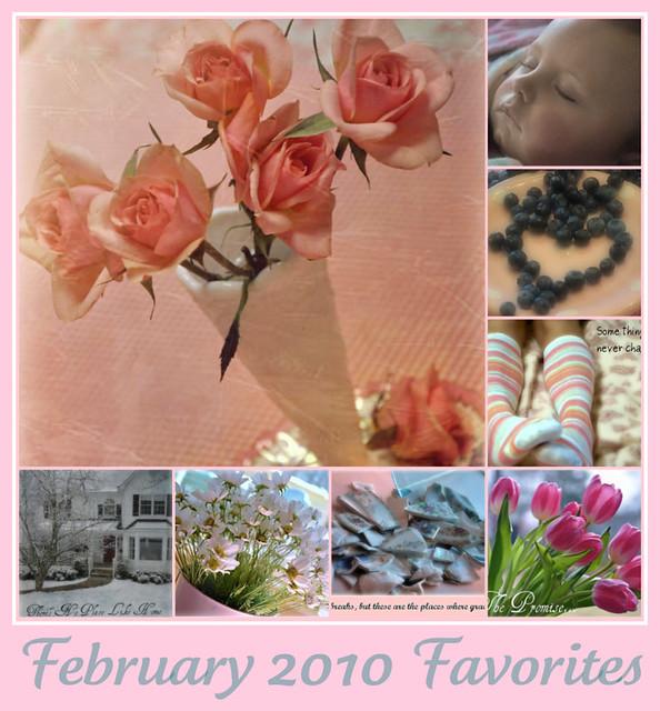 February 2010 Favorites