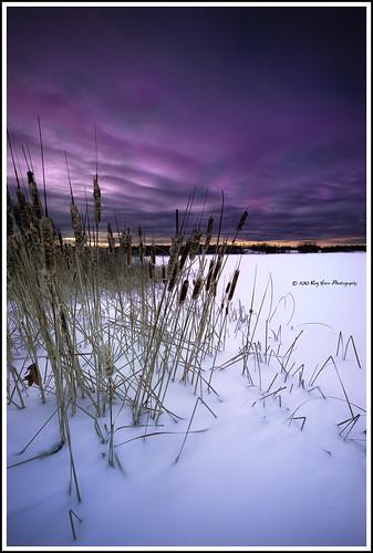 winter sunset snow ice minnesota snowshoe frozenlake cottontails d700