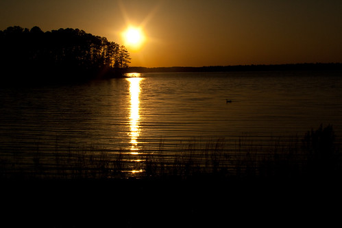travel camping sunset water forest